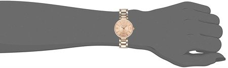 Anne Klein 1870RGRG Watch